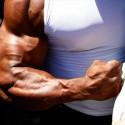 Los BCAA's aumentan la velocidad de la síntesis de proteína tras el entrenamiento