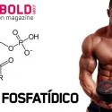 Ácido Fosfatídico: el ácido de la construcción muscular y fuerza
